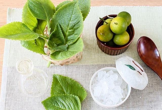 Bí quyết chữa ho tại nhà hoàn toàn bằng thảo dược - trihovuongkhi.com